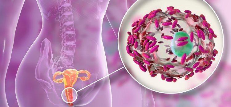Las infecciones en la vagina son de lo más importantes y hay que tratarlas