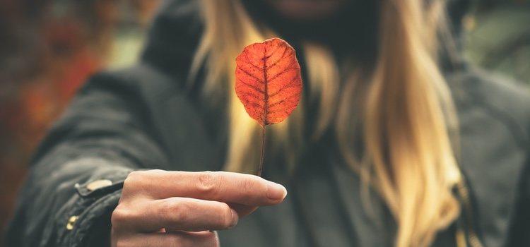 Tener depresión en otoño es bastante habitual y hay que tratarse