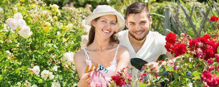 Muchas mujeres logran excitarse con las plantas para llegar al orgasmo