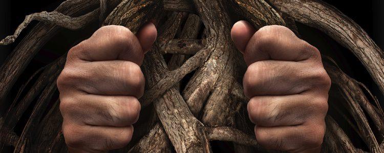 Los hombres que realizan está práctica buscan agujeros o protuberancias que posean atributos sexuales