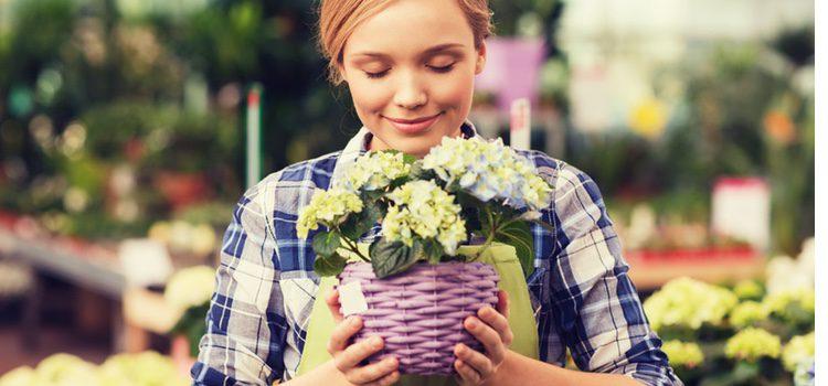 No siempre que hueles flores vas a sentir deseo sexual
