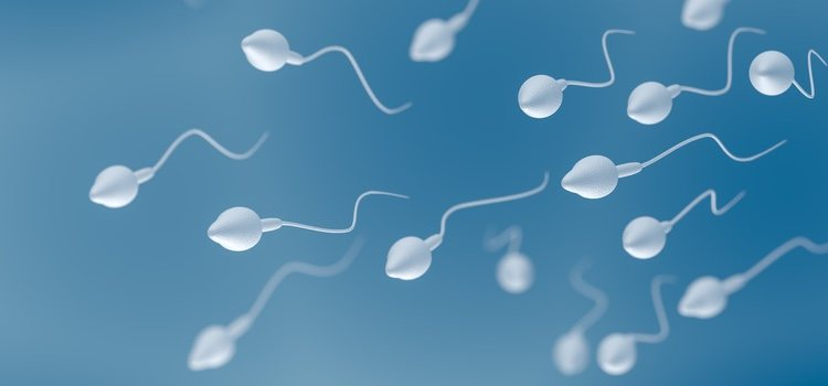 A algunos hombres se les han encontrado espermatozoides en el líquido preseminal