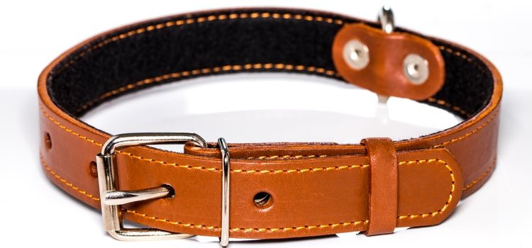 El cinturón incita a atar las manos a tu pareja garantizando el placer sexual