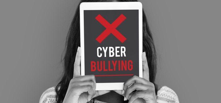 Todo lo que tenga relación con Internet es la base para hacer y para sufrir cyberbullying