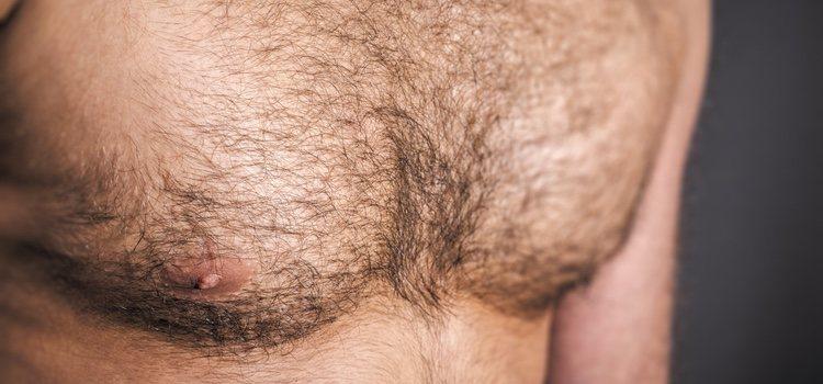 Lumbersexuales
