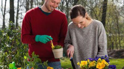Ventajas e inconvenientes de trabajar con tu pareja: ¿puede destruir tu relación?